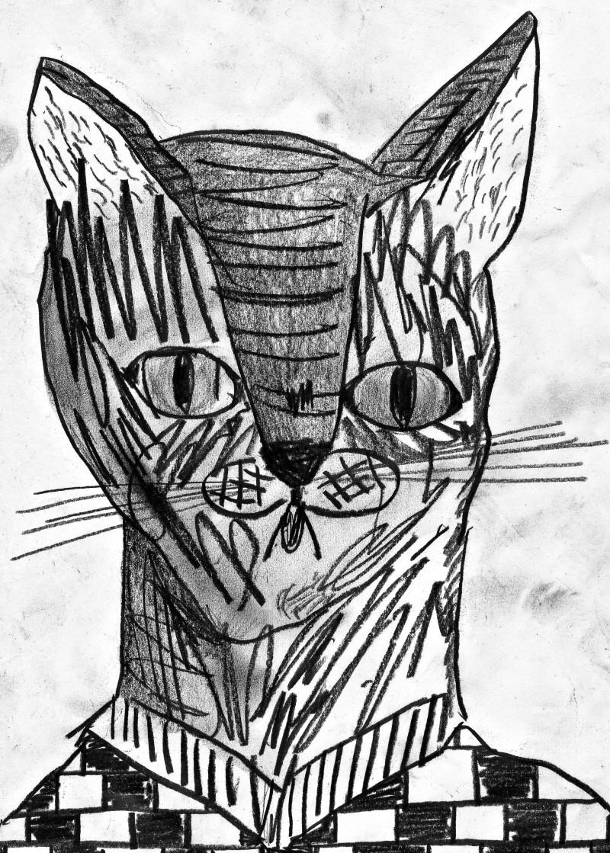 canteen cat 4 - 1